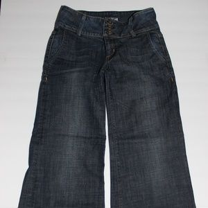Hudson Wide Leg Flare Jeans